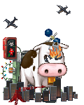 evil cow