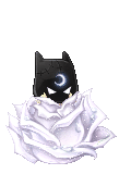 Bat-women hides i