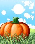 a pumpkin in the