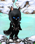 Black Wolf In Win