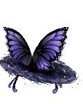 Butterfly Dimensi